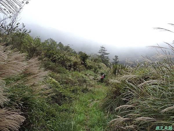 馬武佐野郡山20141102(188)