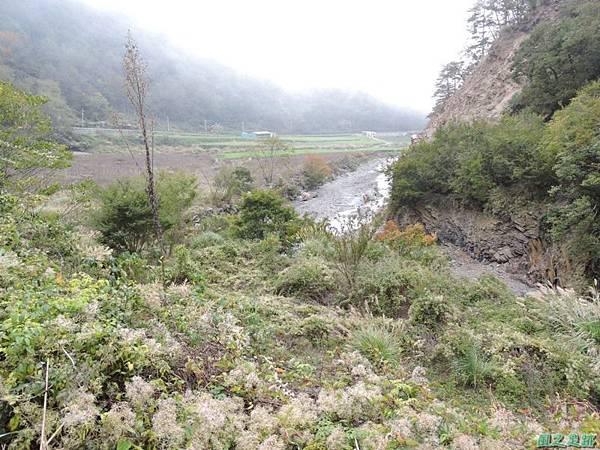 馬武佐野郡山20141102(191)