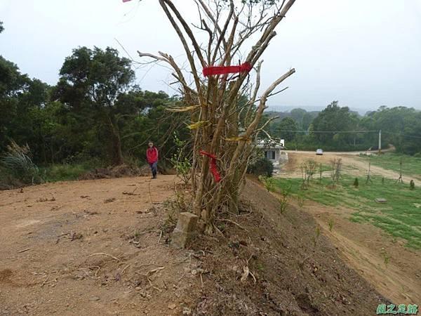 埔山20130212(5).JPG