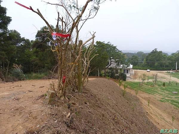 埔山20130212(7).JPG