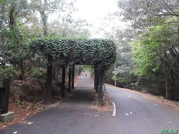 銅鑼自行車道20141117(15)