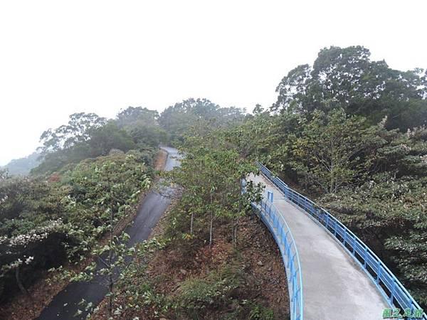 銅鑼自行車道20141117(37)
