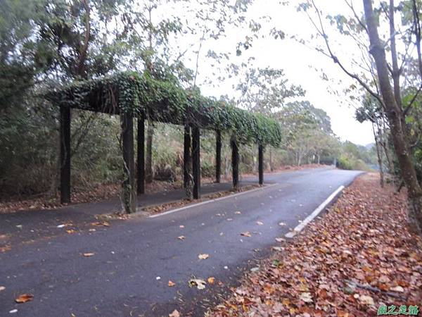 銅鑼自行車道20141117(40)