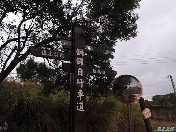 銅鑼自行車道20141117(53)