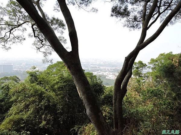 平山20141129(50)