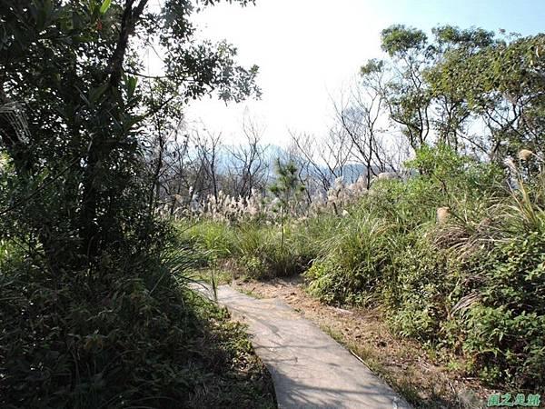 丹鳳山幸福石20141207(64)