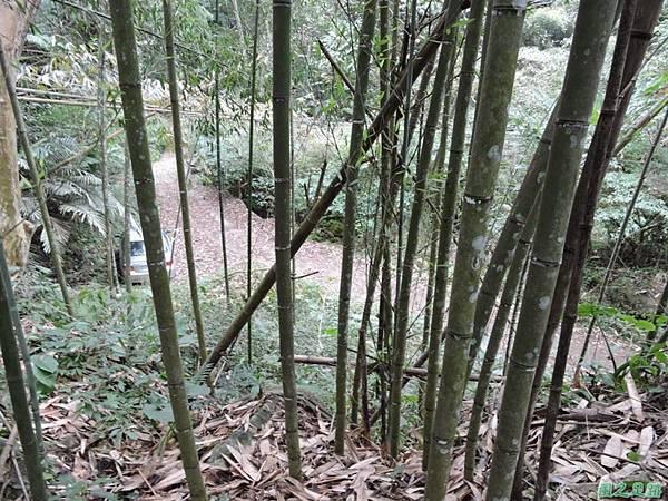 用心山20141213(18)