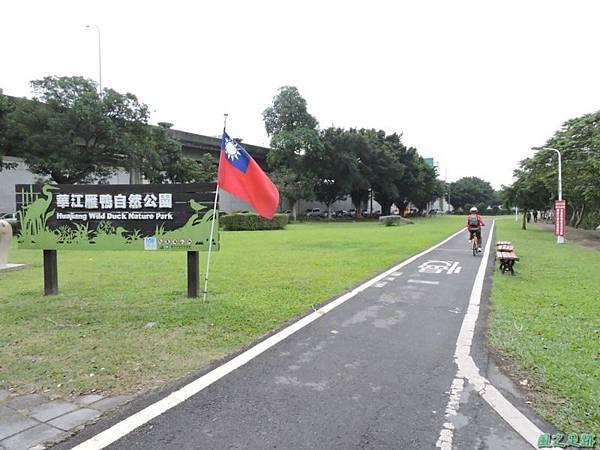華江雁鴨自然公園2014122(1)