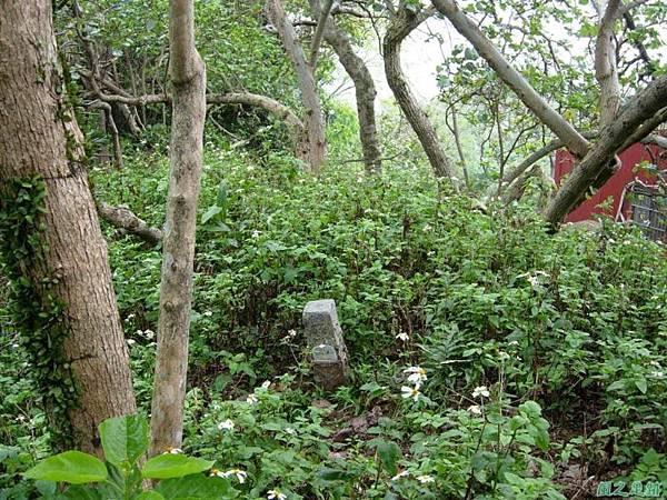 番社后山20070324(3)
