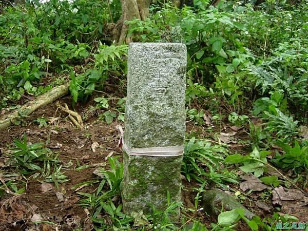 番社后山20070324(7)
