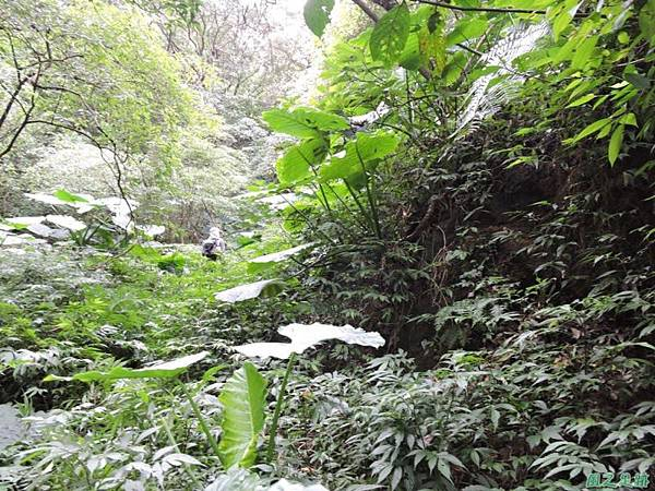 八斗山行20150102(20)