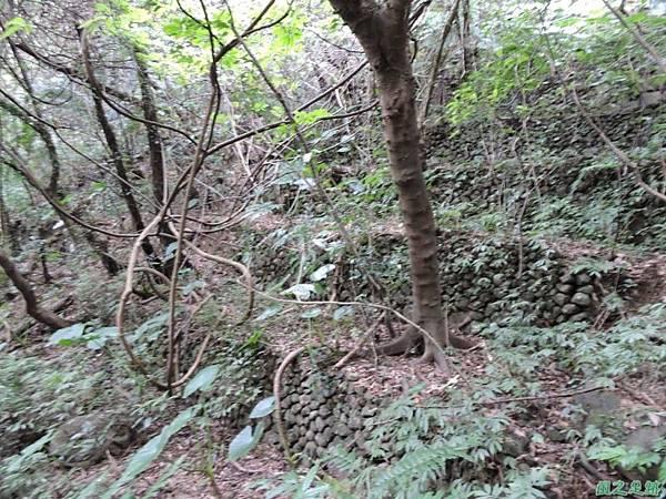 八斗山行20150102(23)
