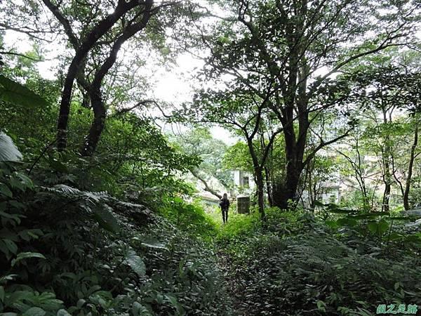 八斗山行20150102(58)