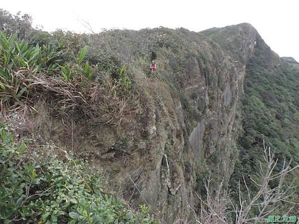 野柳駱駝稜線20150102(79)