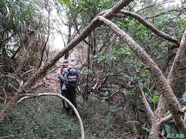 野柳駱駝稜線20150102(39)