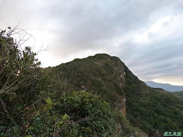 野柳駱駝稜線20150102(51)