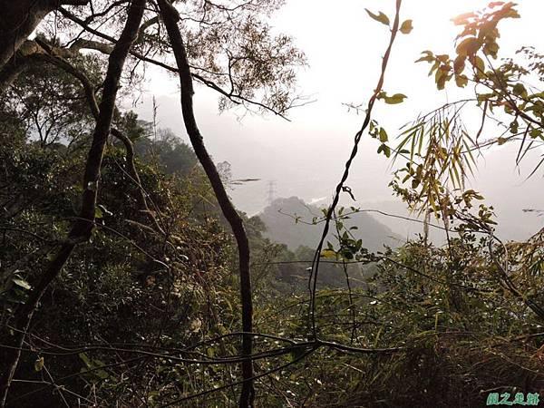 獅潭東坑山20150103(54)