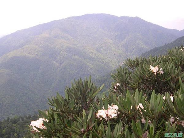 復興尖山20060422(19)