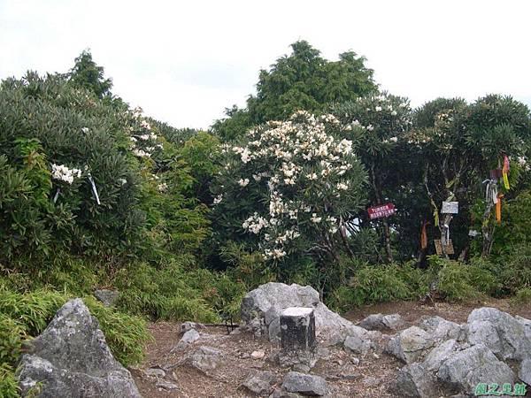 復興尖山20060422(23)