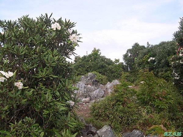 復興尖山20060422(27)