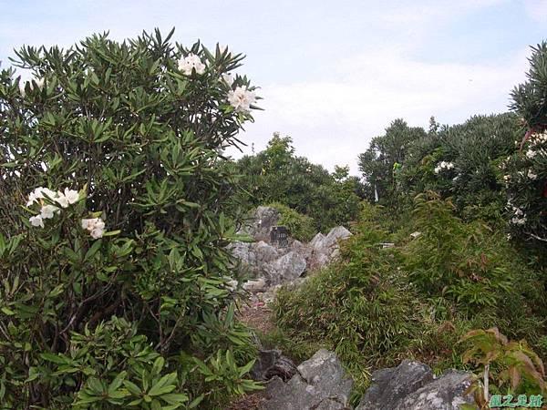 復興尖山20060422(28)