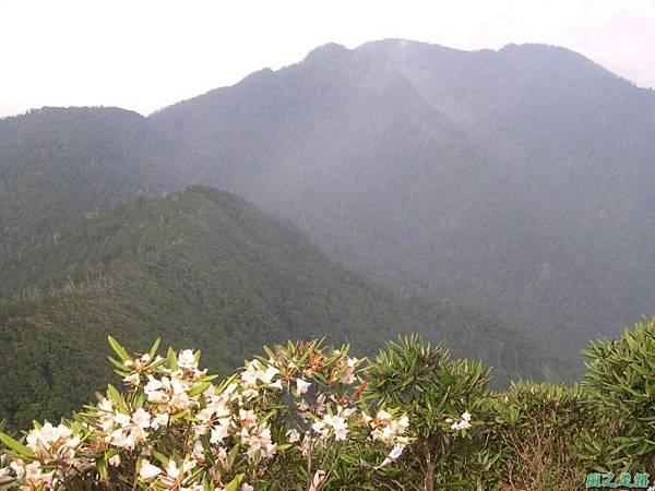 復興尖山20060422(29)