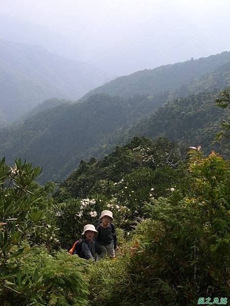 復興尖山20060422(36)