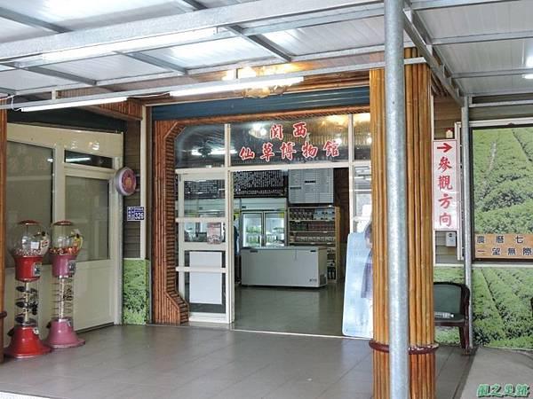 關西仙草博物館(紋白蝶)20150223(1)