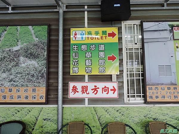 關西仙草博物館(紋白蝶)20150223(2)