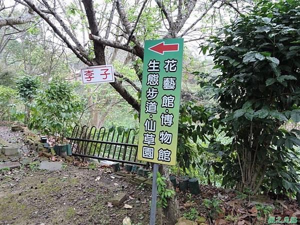 關西仙草博物館(紋白蝶)20150223(3)