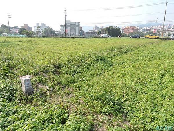 新北河濱自行車道(2)