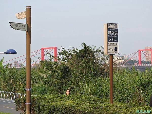 新北河濱自行車道(28)