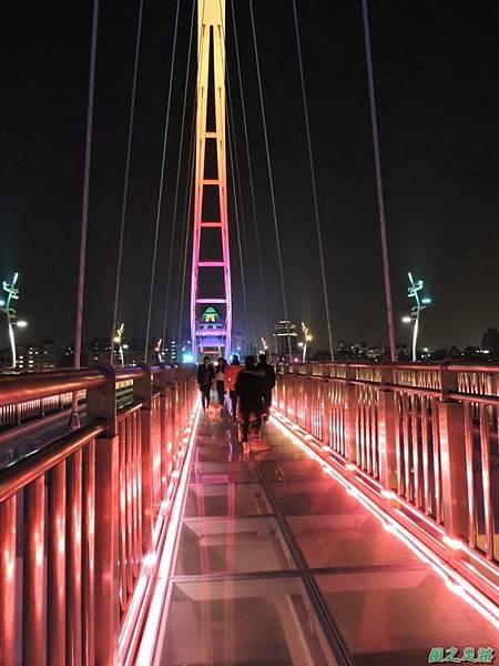 新北河濱自行車道(113)