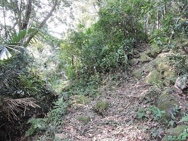 白石山20150812(7)