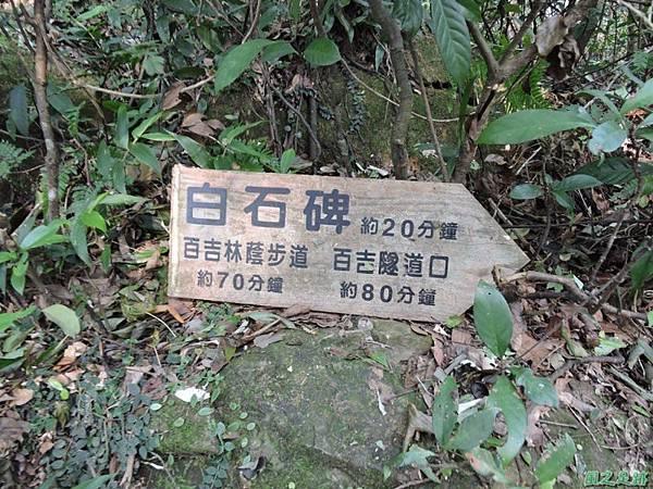 白石山20150812(8)