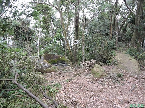白石山20150812(49)