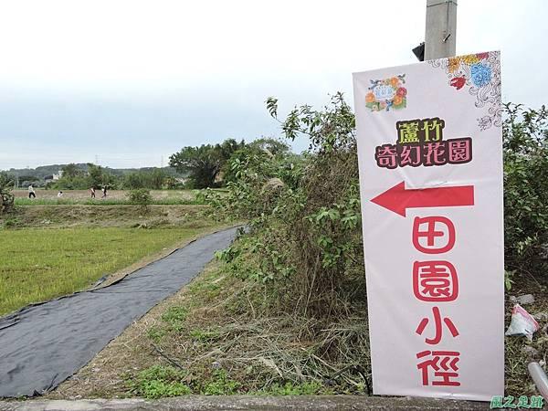 蘆竹花彩節20151220(9).JPG