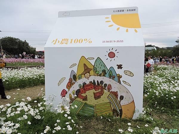 蘆竹花彩節20151220(19).JPG