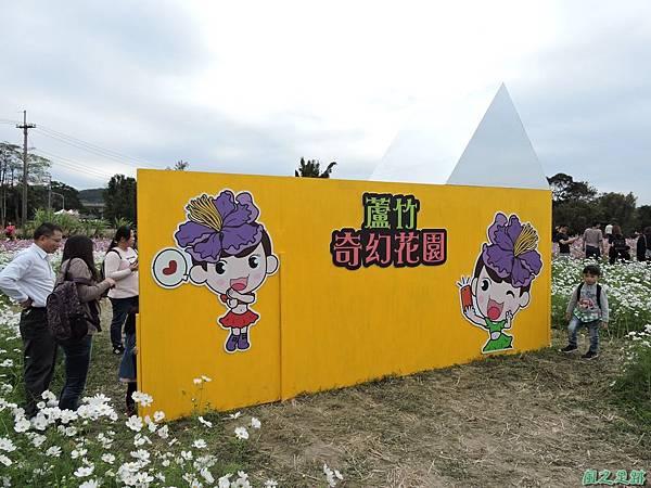 蘆竹花彩節20151220(21).JPG