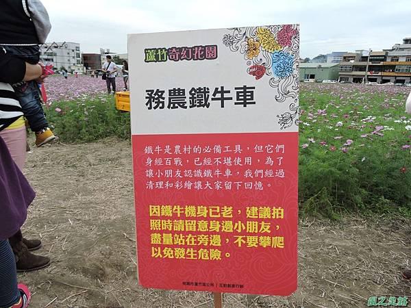 蘆竹花彩節20151220(29).JPG