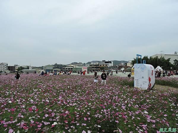 蘆竹花彩節20151220(59).JPG