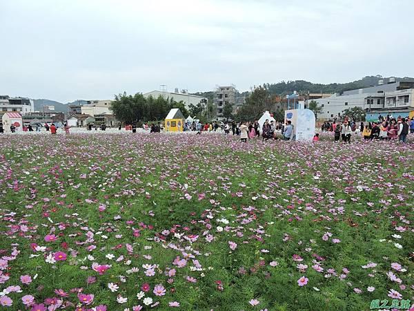 蘆竹花彩節20151220(60).JPG