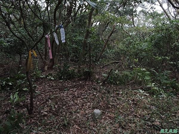 外社山20151220(14)