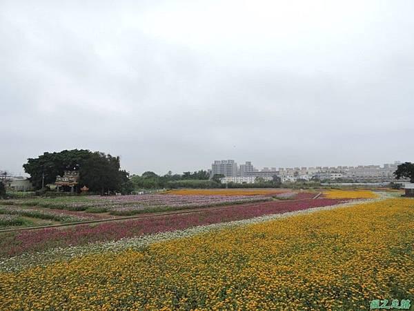 平鎮花彩節20151221(10)