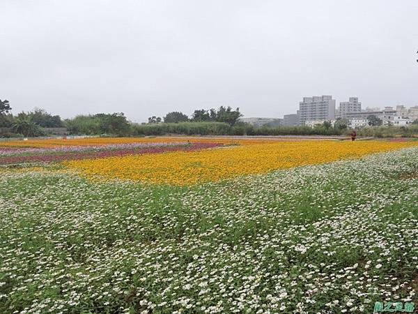 平鎮花彩節20151221(43)