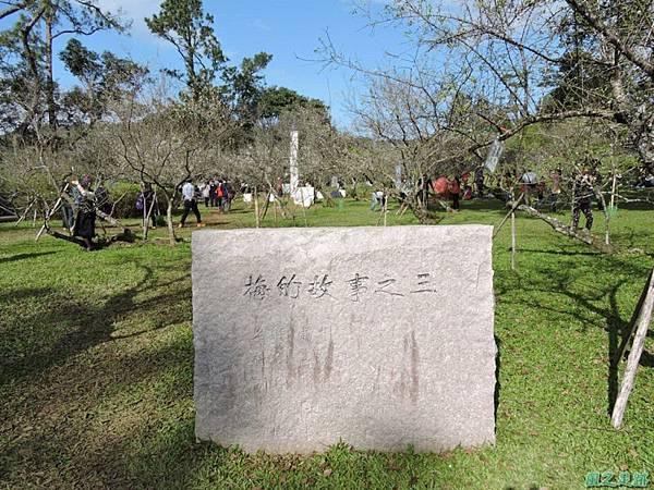 角板山梅花季20160116(36)