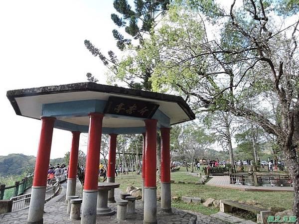 角板山梅花季20160116(54)