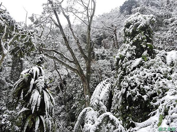 石牛山20160124(14)
