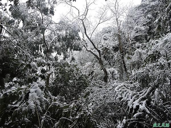 石牛山20160124(19)