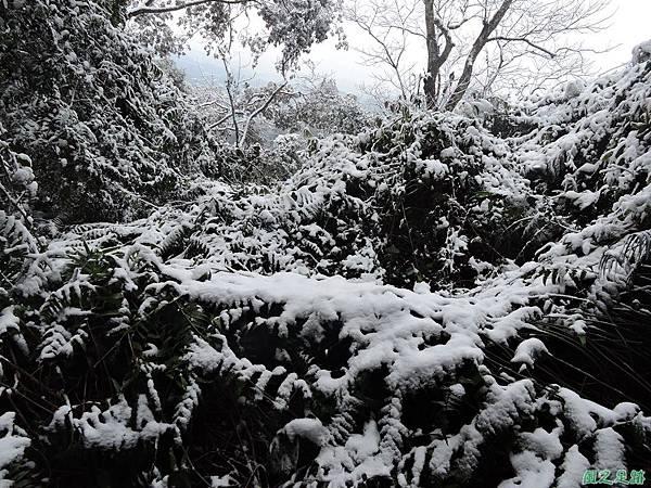 石牛山20160124(23)